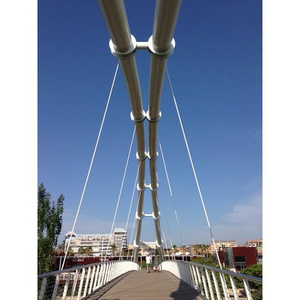 #valencia#park#lovevalencia #lovespain#summer#bridge#sun#sunnyday#zoo