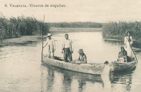 historia de la albufera