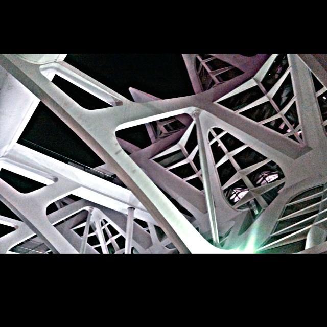#Arquitectura #Architecture #valencia #ciudaddelasciencias #noche #lovevalencia #estructura #arte #street