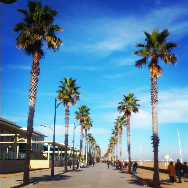 25 de diciembre... Fun! Fun! Fun! #lovevalencia #mycity #valencia #VLC #beach #navidad #christmasday