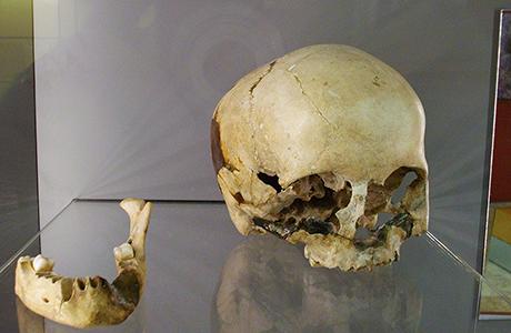 Museo de la Prehistoria