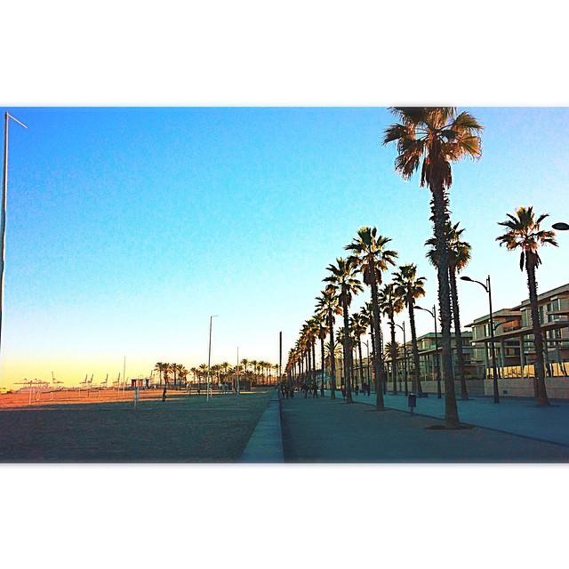 La Patacona.  #valencia #lovevalencia #sunset #sunlight #beach #sky #skyline #palms #patacona #atardecer