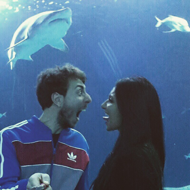 Oceanografico#tiburón #instapic#españa #smile#likeforlike #amazing#¡cuidado!# Valencia#suerte#instacool #igers#smile #likeforlike#peligroso#instacool # smile#love#loveValencia#?