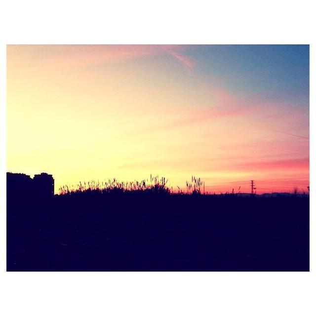 Primeros atardeceres del 2015 ???? #lovevalencia #valencia #winter #sky #skyporn #spain #atardecer #parquedecabecera #paseo #walk #nature #skyline