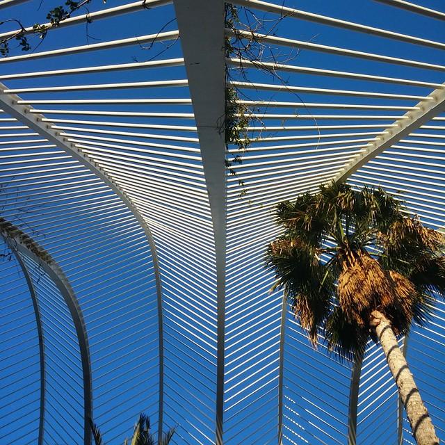 Umbracle por Calatrava