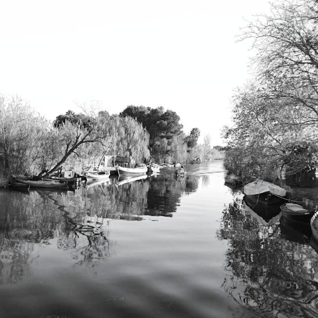 #valencia #nature #ciscoes #albufera #relax #happy #love #lovevalencia #navidad