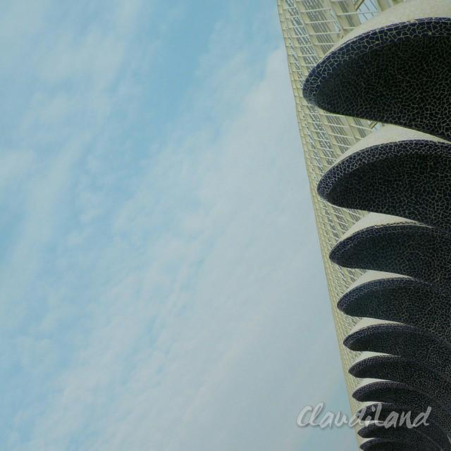 VALENCIA  #valencia #spain #espana #visitvalencia #calatrava #calatravaarchitecture  #land #archilovers #art  #followValencia  #minimal #enjoyValencia  #landscape #valenciagram #envalencia #loveValencia #valenciaenamora
