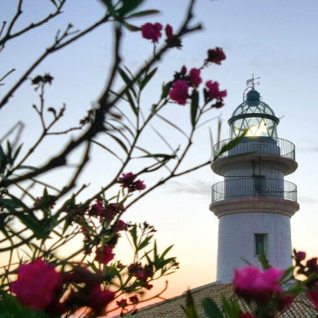 Sunrise at Cullera lighthouse, Valencia (Spain). #cullera #farodecullera #lighthouse #faro #viajar #travel #viajando #viaje #valencia #sunrise #amanecer #sea #playa #beach #spain #españa #visitspain #mar #trip #flores #valenciagrafias #valenciagram #lovevalencia