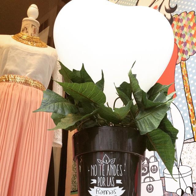 No te andes por las ramas y declárale ya tu amor el día de San Valentín con una cena romántica en Hippocampus ¡va a ser una velada de lo más especial! ¿A qué esperas?#hippocampusvalencia #sanvalentin #amor #love #lovevalencia #loveisintheair #noteandesporlasramas #flores #plantas #cafe #cafeteriavalencia #nochevalencia #restaurantevalencia #copasvalencia #cenavalencia #cenaespecial #cenaromantica #inlove #enamorados #pareja #moda #beauty #cosasmonas #mrwonderfull
