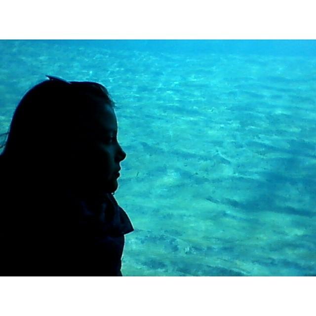 #me #siluet #ocean #oceanographic #valencia #lovevalencia #mequieroquedar #peces #travel #selfie #valevalevalevale