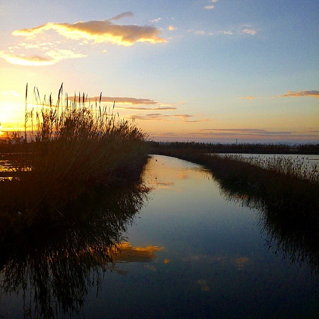 Sunset #atardecer #water #sunset #cloudstagram #cloudporn #clouds #cloud #valenciaturismo #valenciaenamora #valenciacity #valencia #valenciaterraimar #valenciamola #valenciagram #albufera #igersvalencia #igerscomunitat #ig_spain #ig_europe #comunitatvalenciana #naturaleza_comunidadvalenciana #naturestagram #nofilter #nature #like4like #lovevalencia #elpalmar #sun #instamood #instasky