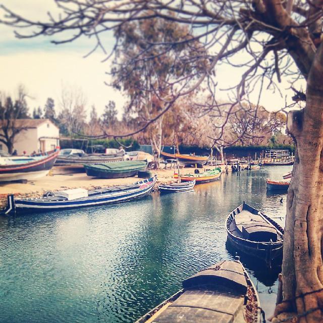 #puerto #puertodesilla #silla #minipuerto #minipuertodesilla #albufera #parquenaturaldelaalbufeta #barcas #Lovevalencia #fotomovil #valenciaturismo #valenciagram