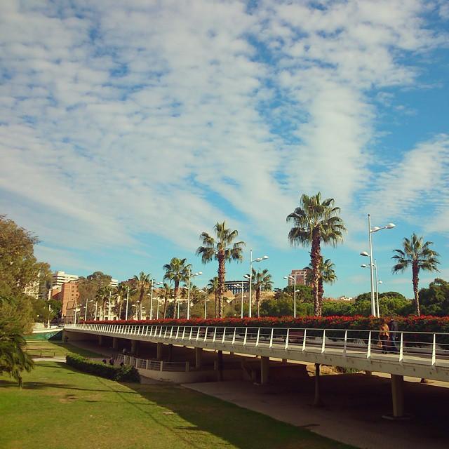 Favorite city, second home #lovedailydose #lovelife #love #happiness #smile #loves_valencia #lovevalencia #valenciaenamora #valenciamola #lovedtobethereforfallas #inspiration #inspo #goodmorning #Fernweh #memories #travel #instatravel #trip #valencia #spring #Frühling  #instagood #instamood #instalove #bestoftheday #photooftheday #enjoythemoment #instaspain #instagermany #pontdelesflores