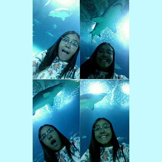 Sobre ser uma criança feliz!! #Tiburones #lovevalencia