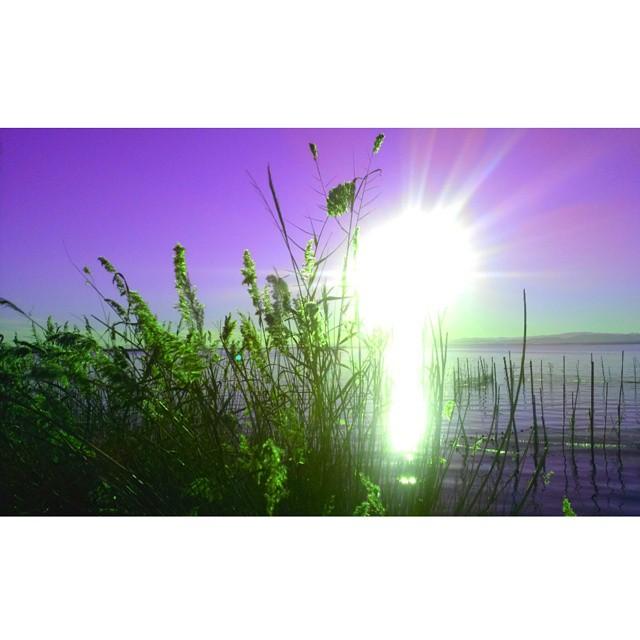 #landscape #colorsplash #Sol #sun #Paseando #lihgt #lihgtthelife #beautiful #Albufera #valencia #lovevalencia #paisaje