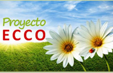 Juego de espejos Proyecto Ecco