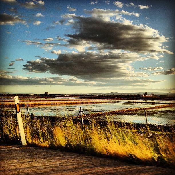 #Valencia #ricefield #colour #albufera #Spain #lovevalencia #cloud #instapic #instmoment #colour #sky #sunset #capture #