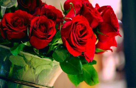 II concurso popular de la rosa