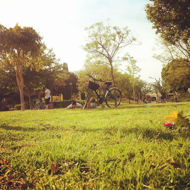 #ParksoftheRiver #valencia #lovevalencia #picnicday