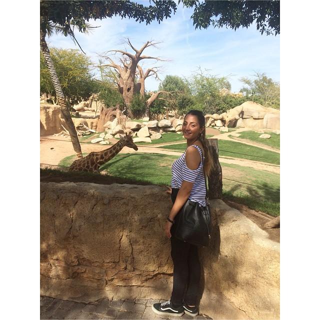 ??????????BioParc  #picoftheday#instasize#coolday#happyday#valencia#bioparc#giraffa#adoro#loveanimals#goodvibes#vsco#vscocam#vscophile#me#myitaly#lovespain#lovevalencia#bestday