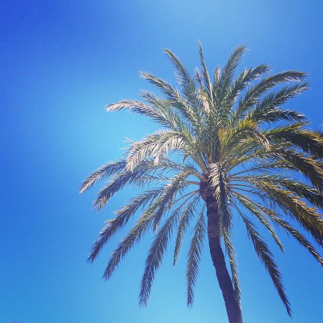 Mañana en la playita, mar, sol, mucha vitamina y sobretodo mucho relax :) Ahora toca comer... #loveValencia