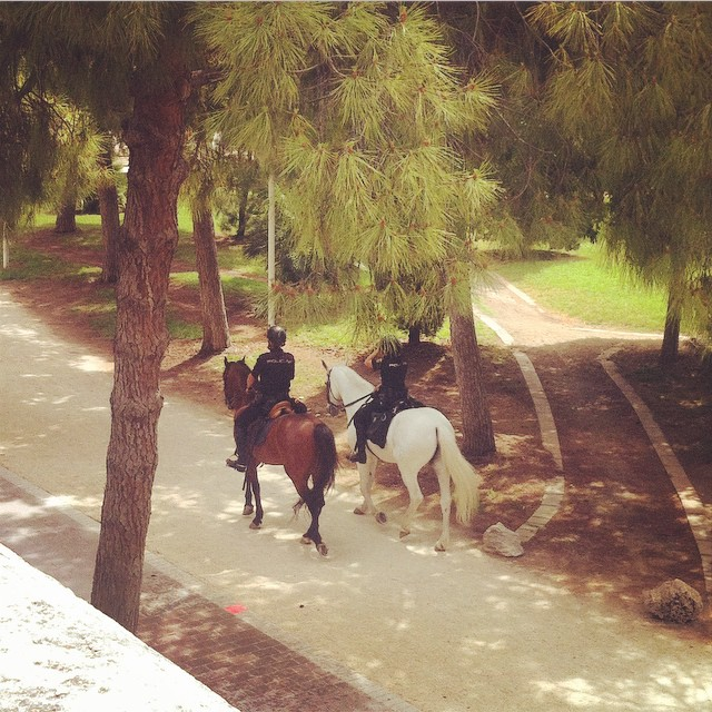 My favourite #policemen ???? ????#jardinesdeTuria #morninginginValencia #lovevalencia #spain #valecia #park #morning #sunshine