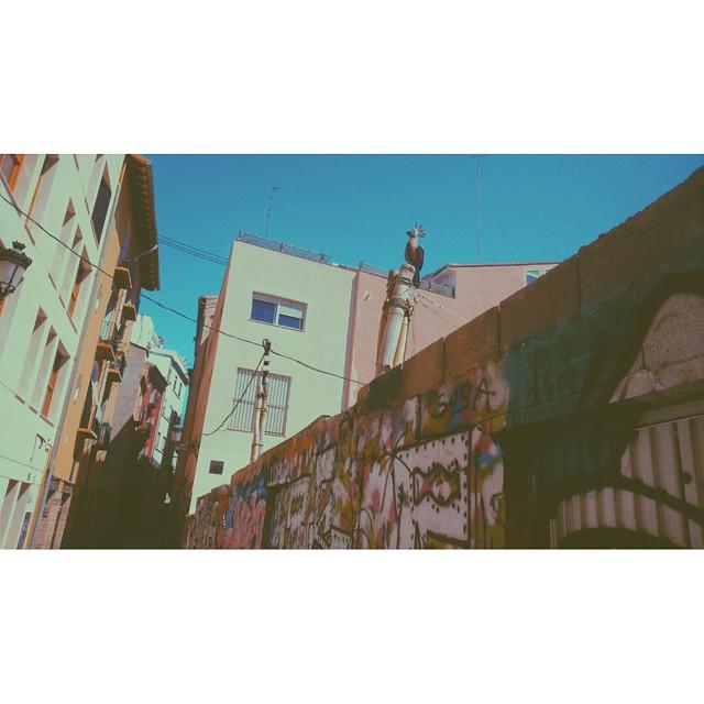 #instasize #valenciastreets #valencia #valenciastreetart #streetart #streets #mivalencia #miespana #espana #spain2015 #spain2015trip #lovevalencia #valenciagram
