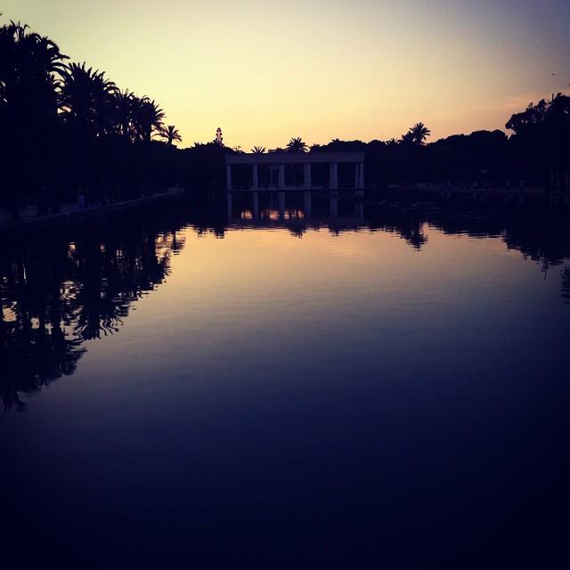 #parquedelturia #vlc #valencia #sunset #lovevalencia