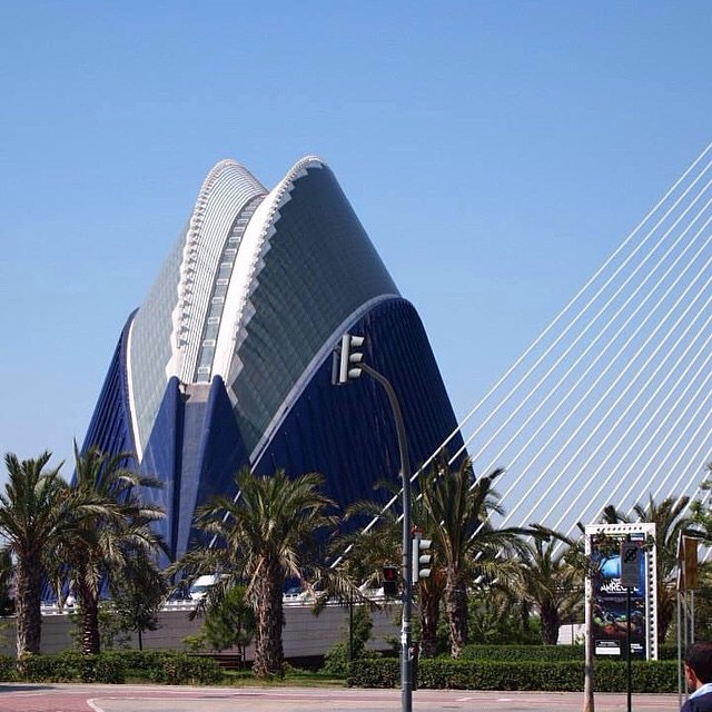 Two summer ago... ?????????? Ciutat de les Arts i les Ciències ???????? #spagna#valencia#holiday#friends#lovetravel#ig_spain_#igworldclub#plane#fly#picoftheday#ok_spain#iGersSpain#somosinstagramers#HDR_EUROPE#LOVES_BESTPIC#lovevalencia#wonderful_places#españa#EspañaInstagram#ontdekvalencia#architecture#ciutatdelesartsilesciènces#cittàdelleartiedellescienze#santiagocalatrava#bestworldpics
