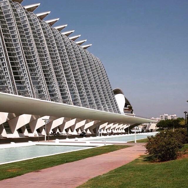 Two summer ago... ?????????? Ciutat de les Arts i les Ciències ???????? #spagna#valencia#holiday#friends#lovetravel#ig_spain_#igworldclub#plane#fly#picoftheday#ok_spain#iGersSpain#somosinstagramers#HDR_EUROPE#LOVES_BESTPIC#lovevalencia#wonderful_places#españa#EspañaInstagram#ontdekvalencia#architecture#ciutatdelesartsilesciènces#cittàdelleartiedellescienze#santiagocalatrava