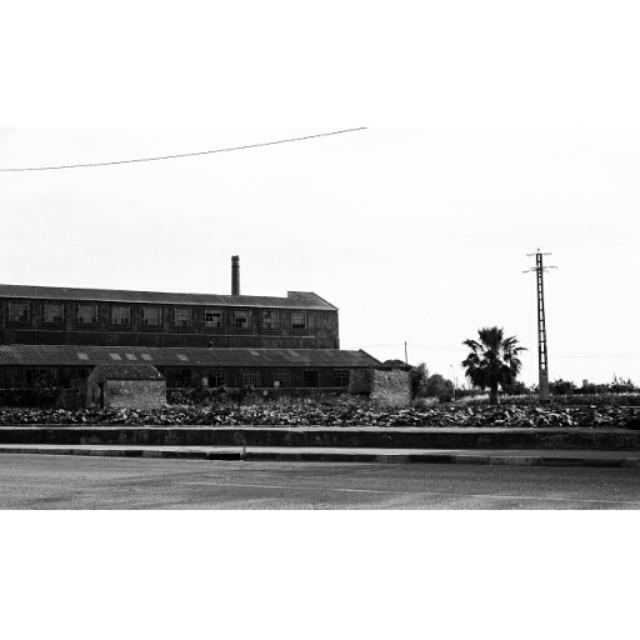 #instasize #mivalencia #miespana #espana #spain2015 #spain2015trip #bnw #blackandwhite #blackandwhitephotography #filmcamera #nikonfm #streets #lovevalencia #valencia #valenciagram #valenciaarchitecture #architecture #valenciastreets