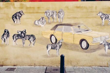 jauria de lobos atacando un taxi
