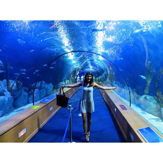 Bajo del mar!! ???? #summer2015 #intothesea #blue #oceanografic #ciutatdelesartsilesciencies #feliz #lovevalencia #vlc