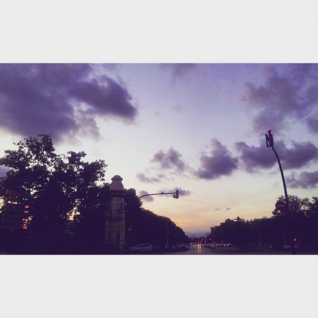 Prisioneros de las drogas delicadas, atrapados en un plano a contraluz #city #sunset #igersvalencia #ig_valencia #valenciagrafias #lovevalencia #estaes_valencia #skyline #landscape #landscape_lovers #archilovers #10likes