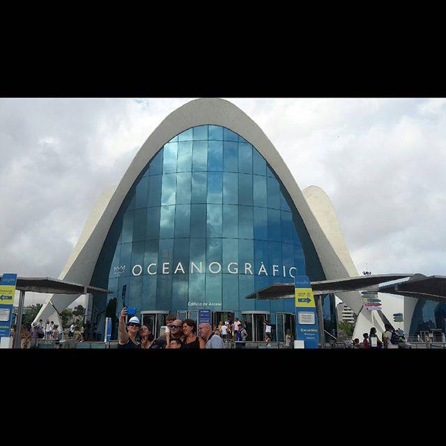 ?OCEANOGRÁFIC? #oceanográfic #valencia #ilpiugrandedeuropa #acquario #españa #travel #picofvalencia #lovevalencia #instatravel