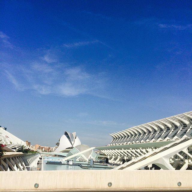 2. Ciutat de les arts i les ciencies!!! Una pequeña parte de esta gran ciudad.. #Valencia #LoveValencia #CiutatDeLesArtsILesCiencies #SummerTime