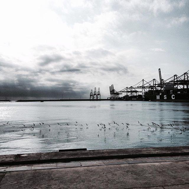 #Memories of a #Work!! #Series #Valencia's #Port!! #Docker #Transtainer #Container #PortOfValencia #Stevedore #Crane #BnW_Planet #CranePorn #SeaPorn #PicOfTheDay #Sea #EditByMe #MyBeautifulWork #IphonePicture #LifeOfAPhotographer #superstarz_bw #Dockers #LookingUpAtCranes #Noray #PuertoDeValencia #Sea #Mediterranean #LoveValencia #Valenciagram #valenciagrafias