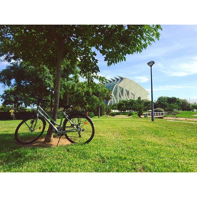 Relaxing day off?????? #valencia #spain #españa #turia #rio #rioturia #lovevalencia #parque #sol #verano #summer #instanature #ciudaddelasartesysciencias #relax #dayoff #green #tree #bike