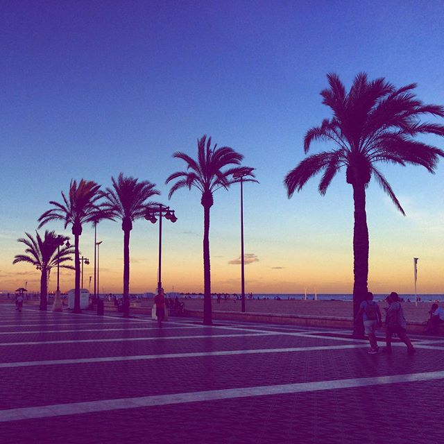 La ciudad, que cada día enamora de nuevo??? #lovevalencia #españa #palmeras