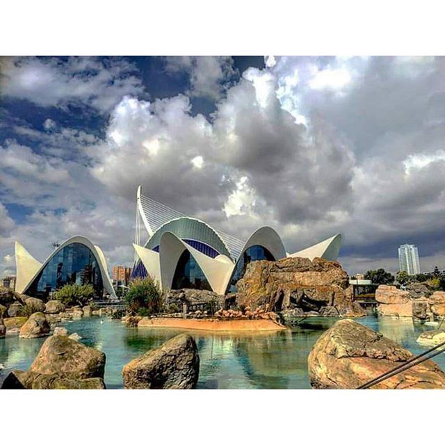Increibles las vistas desde dentro del Oce #TagsForLikes#instalike#instadaily#picoftheday#photooftheday#ciutatdelesartsilesciencies#ciudaddelasartesylasciencias#valenciatoday#valencia#valenciagram#valenciamola#valenciafilter#estaes_valencia#estaes_españa#ok_spain#ok_europe#ok_valencia#loves_valencia#lovevalencia#love#aquarium#oceanografic#valenciaenamora#valenciaimagenes#igersvalencia