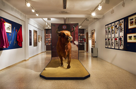 bullfighting-museum-valencia-3
