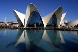 Oceanographic Aquarium