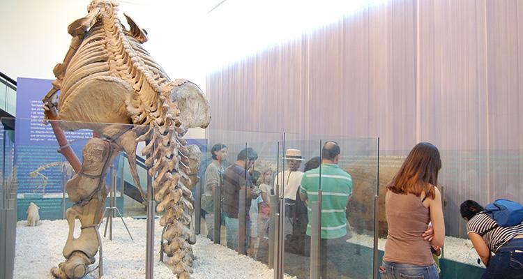 Museo-de-Ciencias-Naturales-de-Valencia