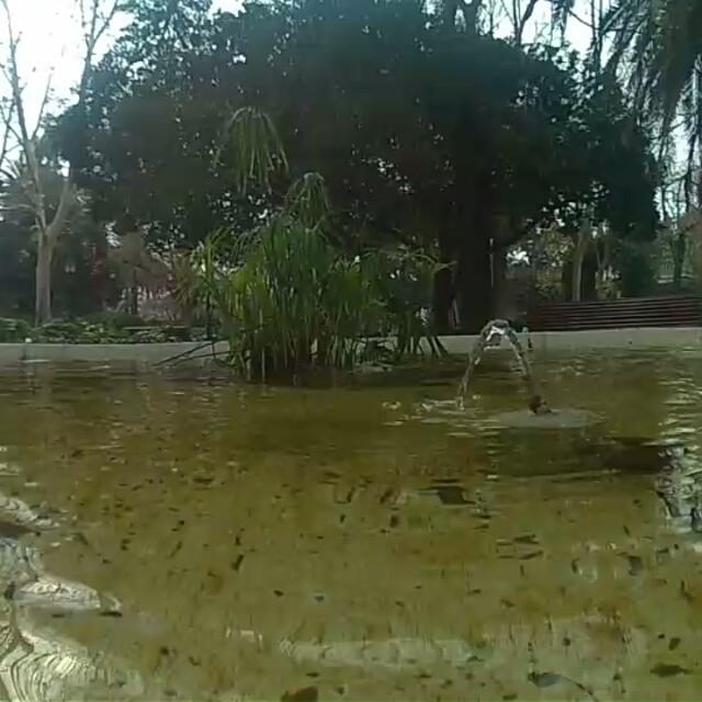 Rincón tranquilo ??? #jardinesdeviveros #jardinesdelreal #relax #agua #fuente #niloxminifwifi #nilox #lovevalencia #valenciaenamora