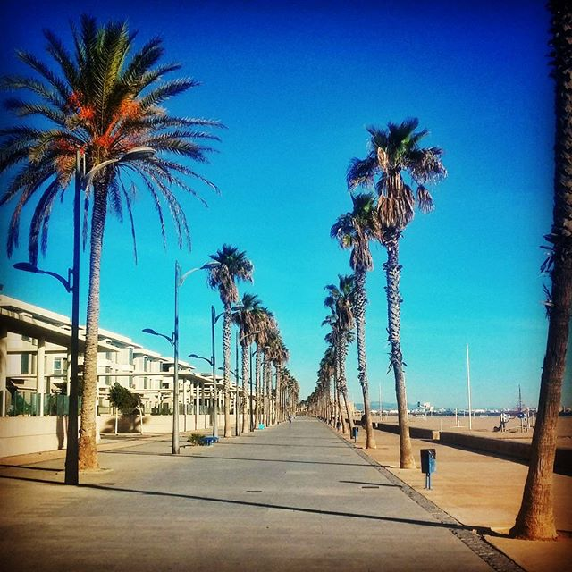 Another nice view from patacona beach seafront #playa #beach #playadelapatacona #alboraya #valencia #valenciagram #valenciagrafias #valenciaterraimar #turisvalencia #valenciatendencia #estaes_valencia #lovevalencia #estaes_de_todo #estaes_espania #turismoaccesible #turismoadaptado #tourismforall #accessibletourism #accessible #accessibility #ocioinclusivo #accessiblebeach #beachforall #lppathfinders #lonelyplanet #comunidadvalenciana