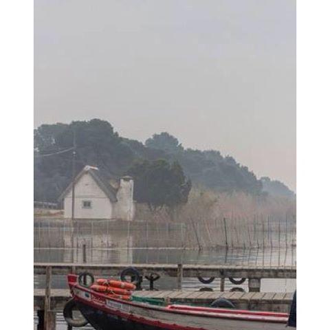 #valenciaterraimar #valenciayorkers #valenciaenamora #valenciagram #fog#fotoclub_ab #igersvalencia #ig_minimalshots #landscape #lovevalencia #match_valencia #albufera #landscape