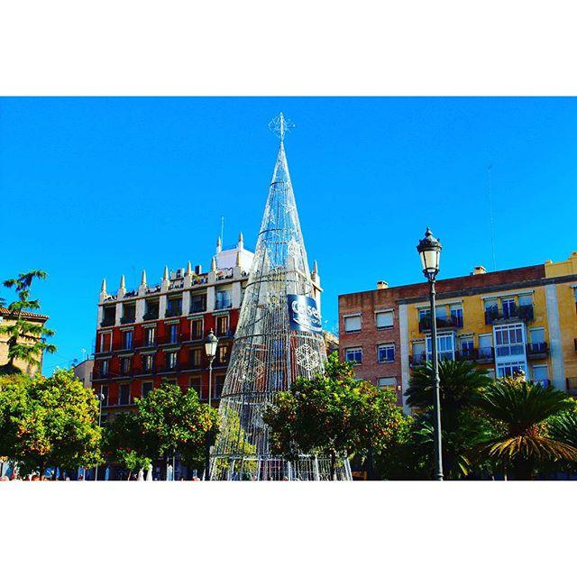 ?? Keep calm and love Valencia (Spain)  #landscape #paisaje #valencia #navidad #Christmas #valenciaenamora #lovevalencia #Spain #like #city #beautifulplaces #canon #morning #love #photograph #fotografía #instagram