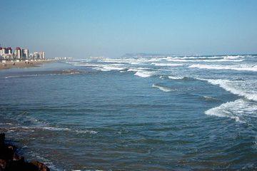 Gandia, Gandia città, Gandia spiagge, Città di Gandia, Gandia provincia di Valencia