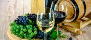 vinos valencia