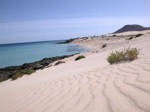 playa de oliva a valencia
